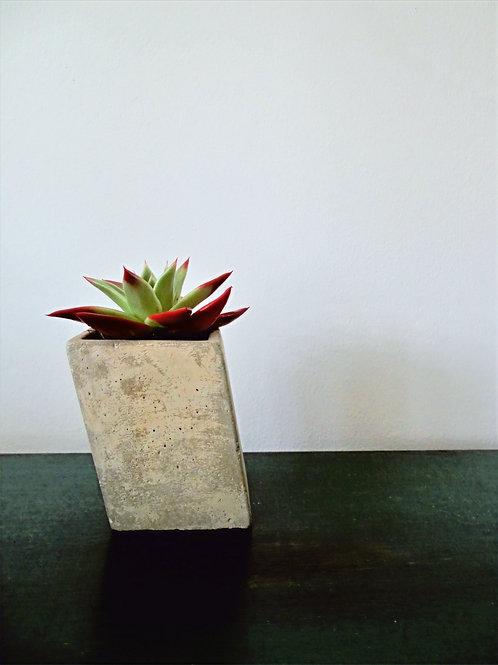 Slanted Concrete Planter