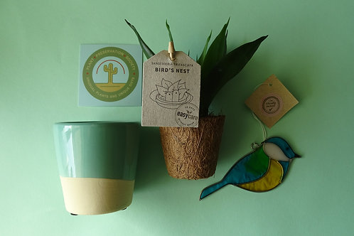 Plant Preservation Gift Box Selection