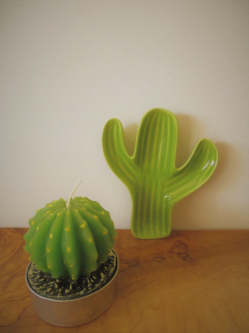 Cacti/Succulent Candle/Cacti Trinket Dish