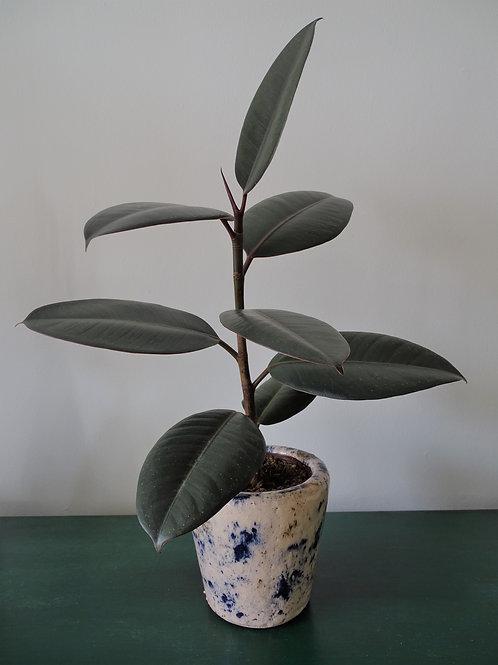Crackle Glaze Ceramic Planter