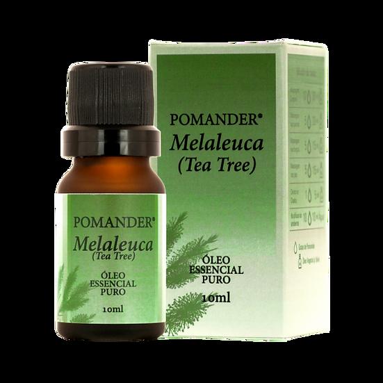 Pomander Óleo Essencial Melaleuca (Tea Tree)