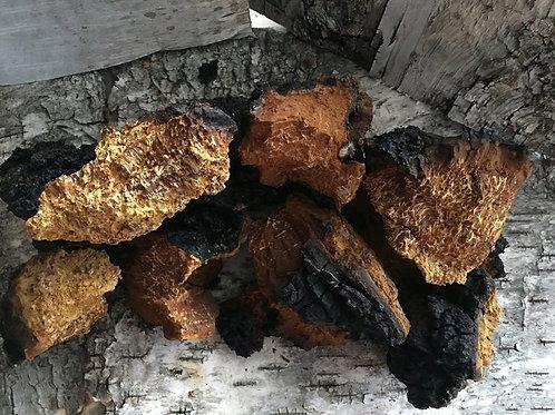 Chaga birch (whole) / birch mushroom 0.5 kg.