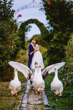 Hochzeitsfotograf Bad Nauheim