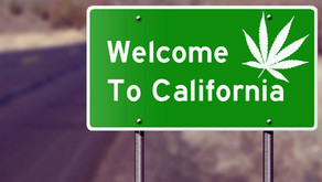 Understanding the Background of Medical Marijuana in California