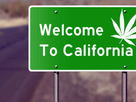 Understanding the Background of Medical Marijuana in California
