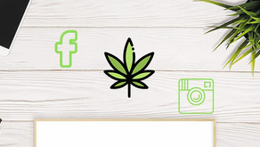 Social Media and Cannabis; What Do the Rules Mean.