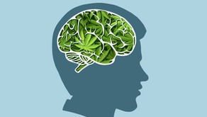 Does Marijuana Help Users With Mental Health Issues?