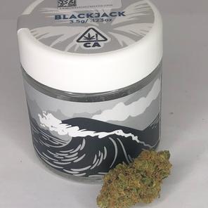 BlackJack by Caliva - Strain Review