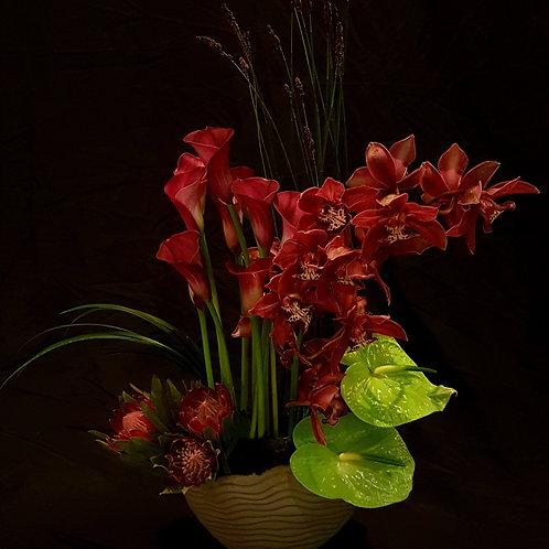 Designed orchid Arrangement - סידור סחלב מעוצב
