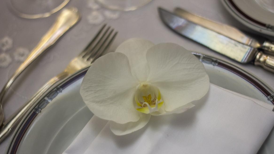 Shabat White 6.jpg