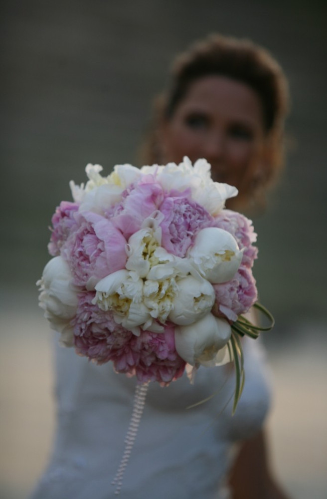 Peonies white  & Pink.JPG