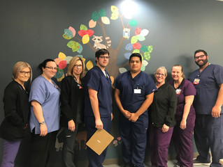 Fall Tree Improves Patient Safety