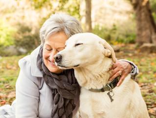 Benefits of a Furry Friend