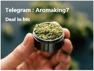 Bitcoin seoul scammer
