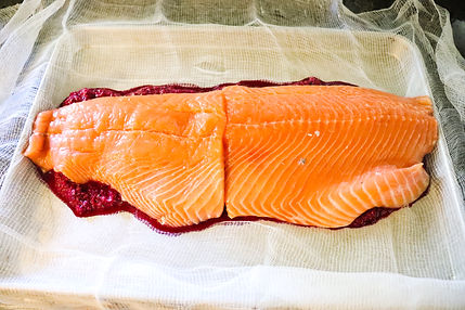 SALMON SITTING ON BEET CURE