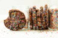 CHOCOLATE SPRINKLE SUGAR COOKIES.jpg