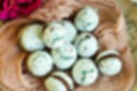 ROBIN'S EGG MACARONS.jpg