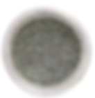 Screen Shot 2020-02-05 at 7.55.51 AM.png