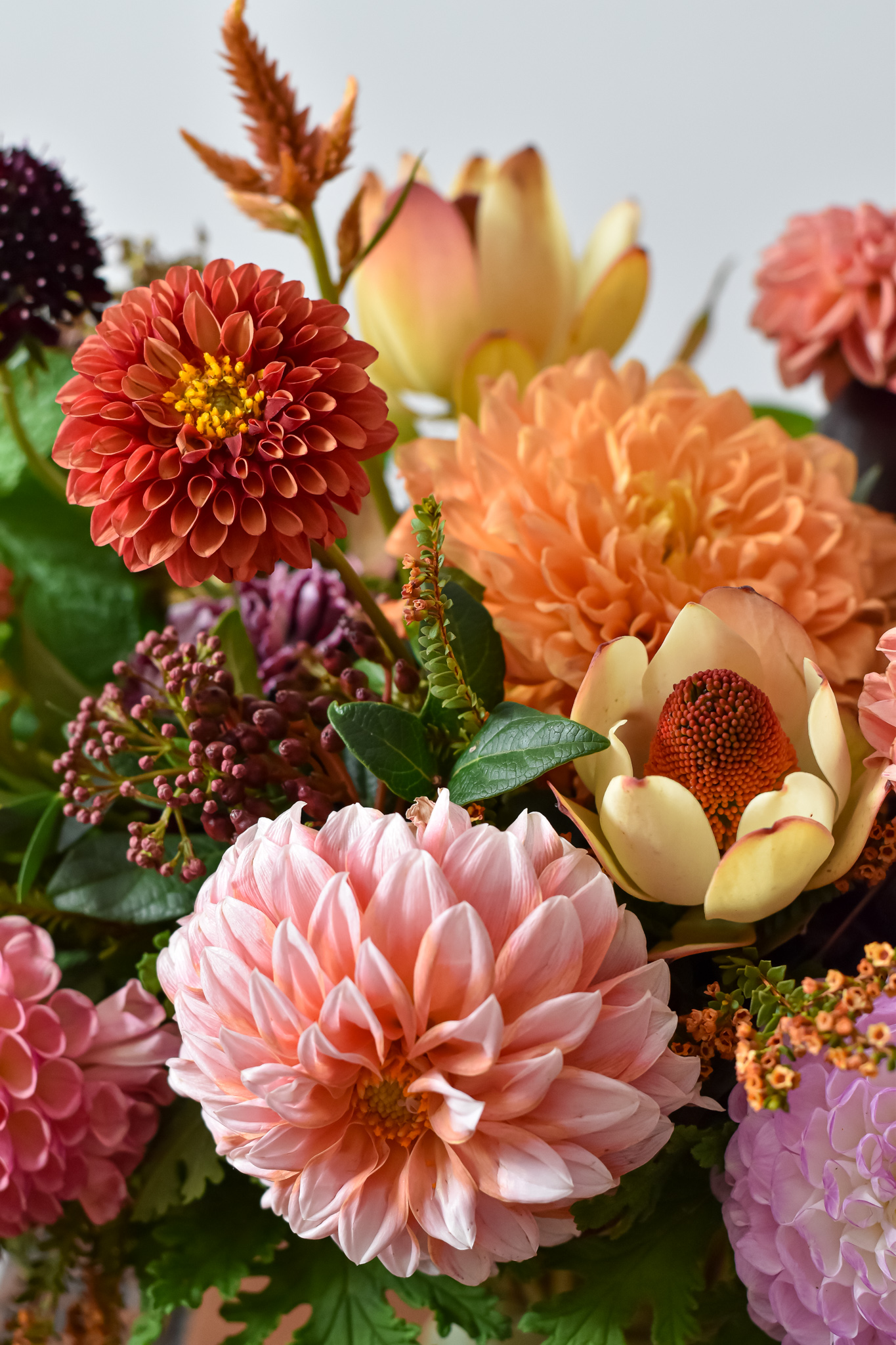 Dahlia autumn centerpiece