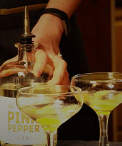 Making martinis mobile gin tasting