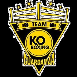 liga4boxing-KO-BOXING-1_edited.png