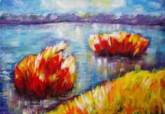 Waterlandscape-3