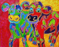 Funny Cows-4