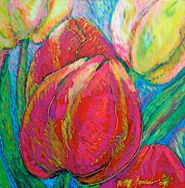 Tulipani nel sole