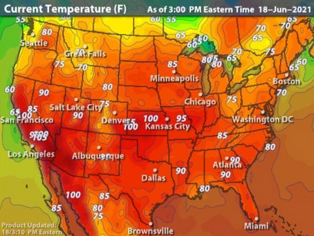 Be Careful In The Heat!