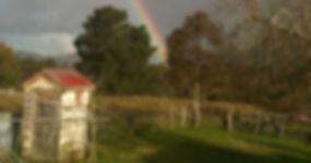 Jo Rainbow.jpg