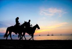 Horse riding*