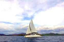 Catamaran - Sailing Cruise*