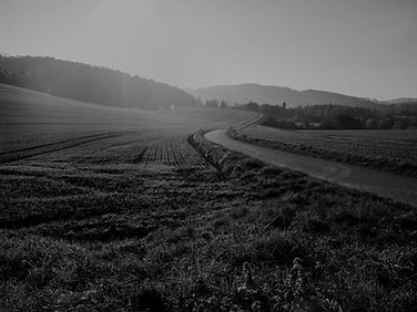 Road black and white.jpg