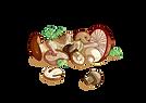 Les_soupes_de_grand-mère_-_champignons1