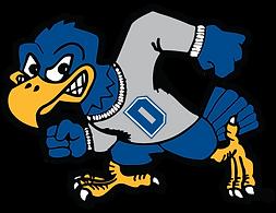 Dickinson State University