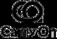 CarryOn_logo_500px_edited.png
