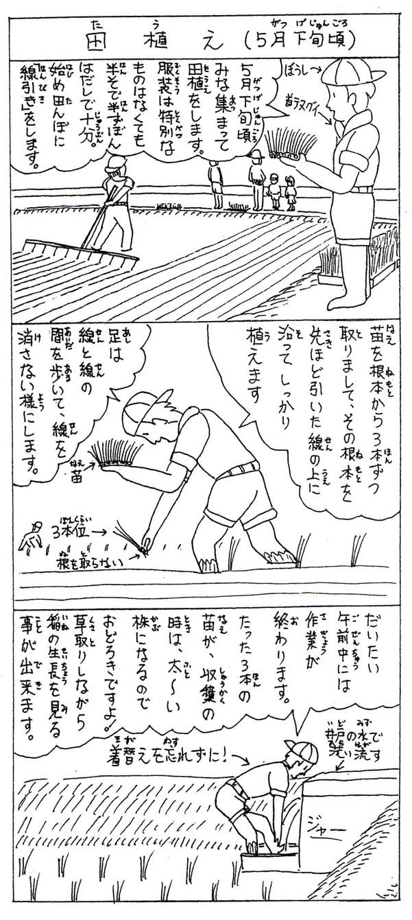 米クラブ農作業【田植え】
