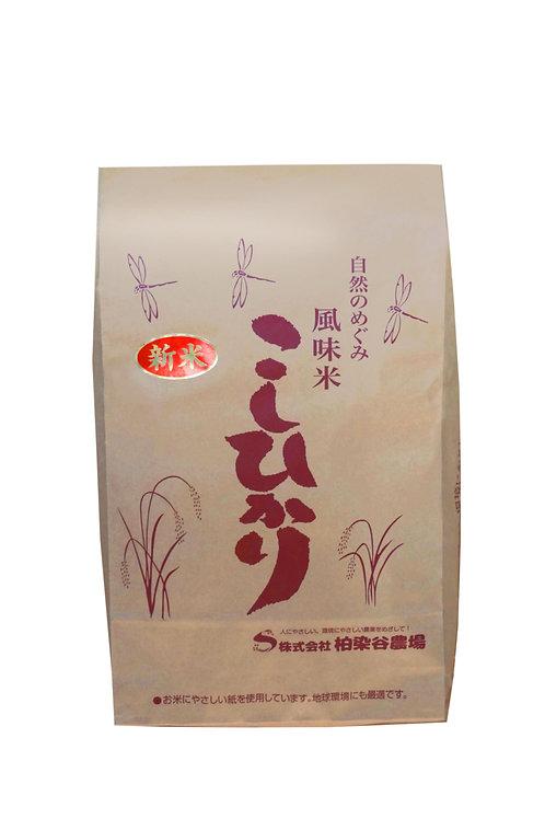 風味米 こしひかり 5kg
