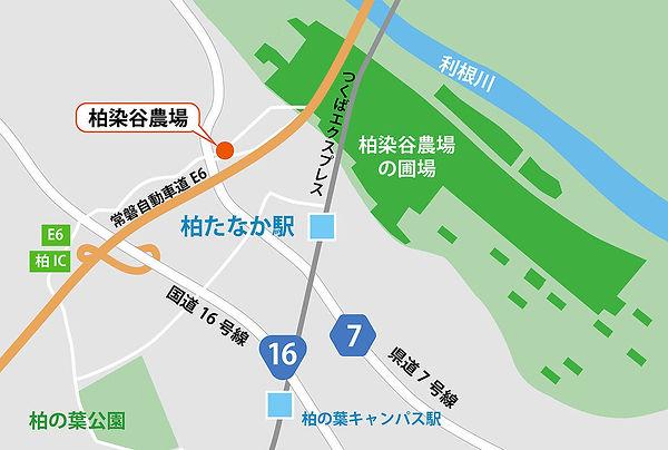 柏染谷農場地図_アートボード 1.jpg