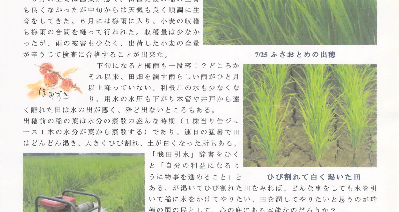 200107_あぜ道だよりNo32.jpg