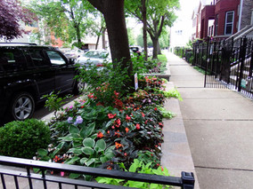 Bucktown Neighborhood & Garden Walk