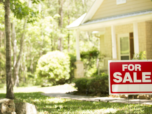Senator Allison DeGazon to update Real Estate Laws
