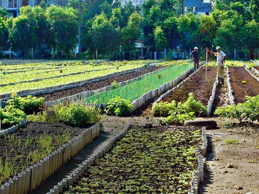 Sen. DeGazon provides Agriculture Update