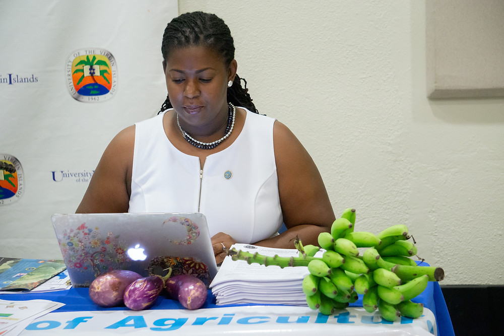 Sen. Allison L. DeGazon takes notes during the 2020 Farmers and Fishers Conference at the University of the Virgin Islands Albert A. Sheen Campus on St. Croix