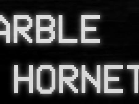 The brainwashing phenomenon of Marble Hornets.