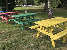Colour Picnic Table 1.jpeg