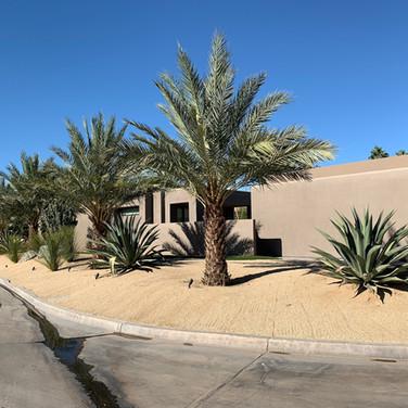 Desertscape Modern Remodel
