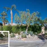 Desert Corner Curb Appeal