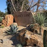 Desert Entryway Curb Appeal