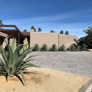 Sleek Desertscape Design